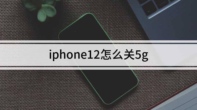 iphone12怎么关5g